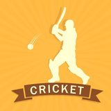Cricket batsman while playing. Stock Photo