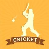 Cricket batsman while playing. Stock Photo