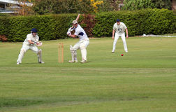 Cricket.Batsman about to hit ball.. Royalty Free Stock Photos