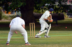 Cricket batsman try to blocks the ball Royalty Free Stock Image