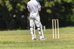 Cricket Batsman Wickets Royalty Free Stock Images