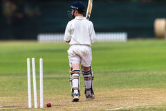 Cricket Batsman Wickets Out Royalty Free Stock Photos