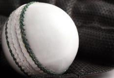 Cricket bollen och handsken. Royaltyfri Fotografi