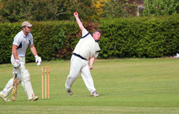 Cricket bowler in action. A Cricket bowler in action about to bowl the ball.. Close up Stock Image