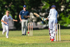 Cricket Bowler Batsman Action Stock Photo