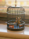 Cricket in cage Royalty Free Stock Images