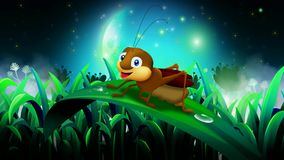 Cricket cartoon , best loop video background for relaxing and calming
