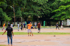 Cricket in Cochin(Kochin) of India Royalty Free Stock Photos