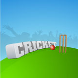 Cricket concept with audience. Royalty Free Stock Photography