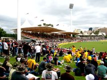 Cricket Crowd Stock Photography