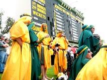 Cricket Crowd & Scoreboard Stock Image