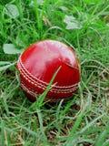 cricket czerwone balowa Fotografia Royalty Free