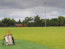 Cricket d'arrière-cour de printemps photographie stock libre de droits