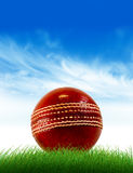 cricket de bille Images libres de droits