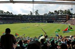 Cricket de record mondial Photos stock