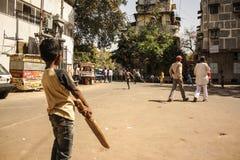 Cricket della via Immagine Stock