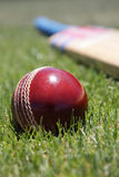 Cricket equipment. Royalty Free Stock Photo