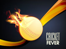 Cricket Fever concept with ball in fire flame. Cricket Fever concept with ball in flame and waves on blue background Royalty Free Stock Photos