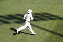 Cricket fielder royalty free stock images