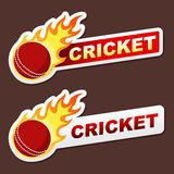 Cricket flame sticker banner label tag Royalty Free Stock Photos