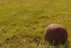 Cricket Floodlit Photo libre de droits