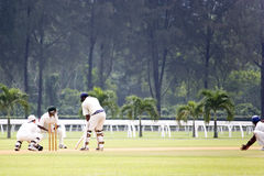 Cricket Game Stock Image
