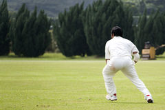 Cricket Game. Fielder action in an international friendly cricket game Stock Images