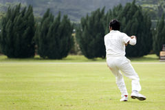 Cricket Game. Fielder action in an international friendly cricket game Stock Image