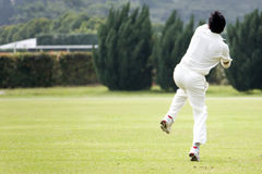 Cricket Game. Fielder action in an international friendly cricket game Stock Photography