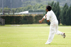 Cricket Game. Fielder action in an international friendly cricket game Royalty Free Stock Image