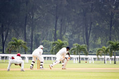 Cricket Game. Players in action in an international friendly cricket game Stock Images