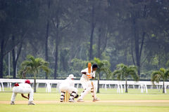 Cricket Game. Players in action in an international friendly cricket game stock image
