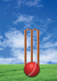 Cricket game. Wicket and ball with sky and grass background royalty free stock photos
