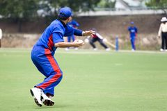 Cricket Game. Fielder in action Royalty Free Stock Photo