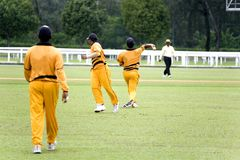 Cricket Game Royalty Free Stock Images