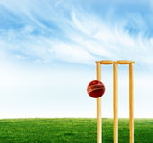Cricket game Stock Photos
