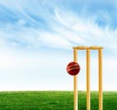Cricket game. A photo of cricket stumps and cricket ball stock photos