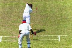 Cricket Action Batsman Ball Wicket Keeper Overhead Stock Images