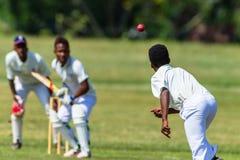 Cricket Action Bowler Ball Batsman Royalty Free Stock Photography
