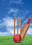 Cricket game on lawn. A cricket game on the green lawn stock photos