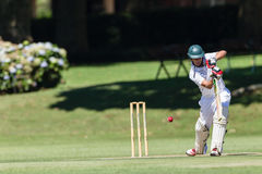 Free Cricket Game Players Action Stock Photo - 37714630