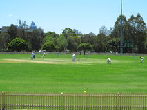 Cricket game scene. Young Australian cricket players in training for a match royalty free stock image