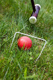 Cricket game, stick and ball Royalty Free Stock Photos