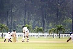 cricket gra Obraz Stock