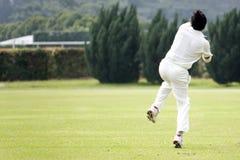 cricket gra Fotografia Stock