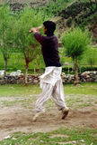 cricket gra Zdjęcia Royalty Free