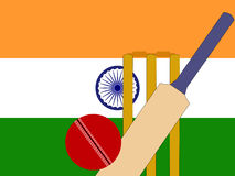 Cricket indien Images stock