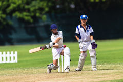Cricket Junior Action  Stock Photos