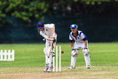 Cricket Junior Action Batsman Stock Photo
