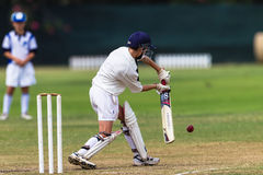 Cricket Junior Batting. Close cricket action of young schools player batting bat ball stroke Royalty Free Stock Image